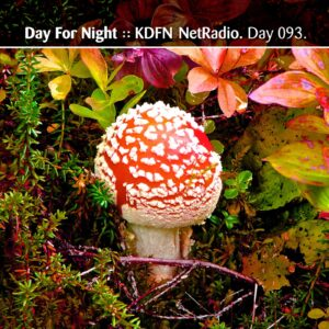 Day For Night.fm :: Streaming NetRadio [ Day 093 ]