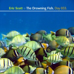 Eric Scott :: The Drowning Fish [ Day 033 ]
