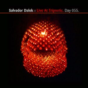 Salvador Dalek :: Trypnotica / Live at Tripnotic [ Day 055 ]